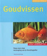 Goudvissen