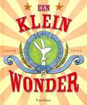 Klein-wonder