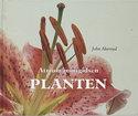 Atrium-minigidsen:-Planten