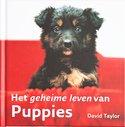 Geheime-leven-van-Puppies